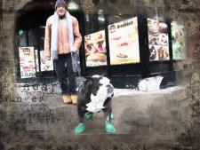 A dog wearing rain boots