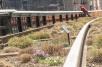 Chelsea High Line Park