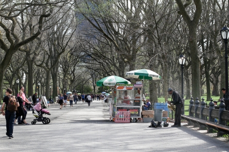 The Mall at Central Park