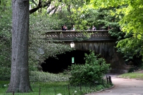 Bridge at Centeral Park