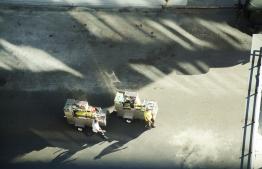IMG_0711 7D Falel carts