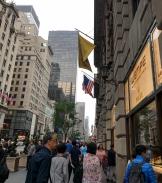 5th Avenue Window Shoping