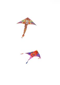 IMG_1819 7D kites