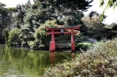 Brooklyn Botanical Gardens Japanese Gardens