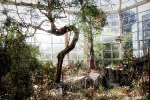 Botanical Gardens Conservatory