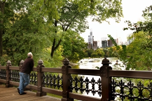 Wooden Oak Bridge, Central Park
