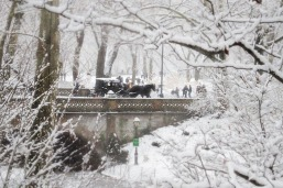12092017IMG_9152 7D buggy ride in the snow central park sm