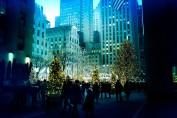 12222017 IMG_9765 7D the christmas rush