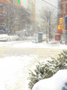 2018 0104IMG_7012 snow
