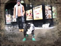 IMG_8240_SX dog wearing shoes sm