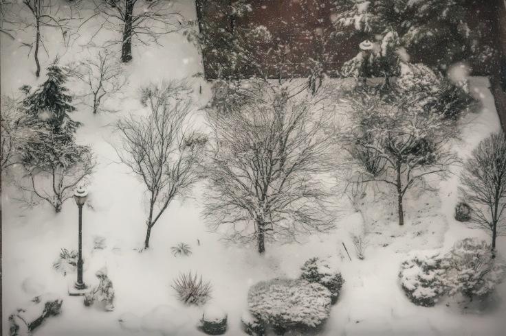 20180321 IMG_0673 7D snow in the garden sm