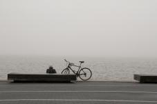 20180404 IMG_0912 7D Foggy Contemplation sm