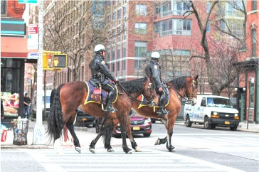 20180411 IMG_1616 7D Mounted NYPD sm