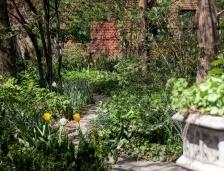 20180502 IMG_2334 7D gardens sm