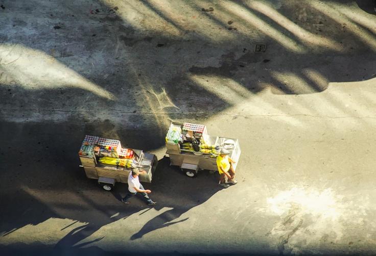 IMG_0711 7D Falel carts sm