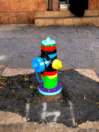 IMG_0741 hydrant sm